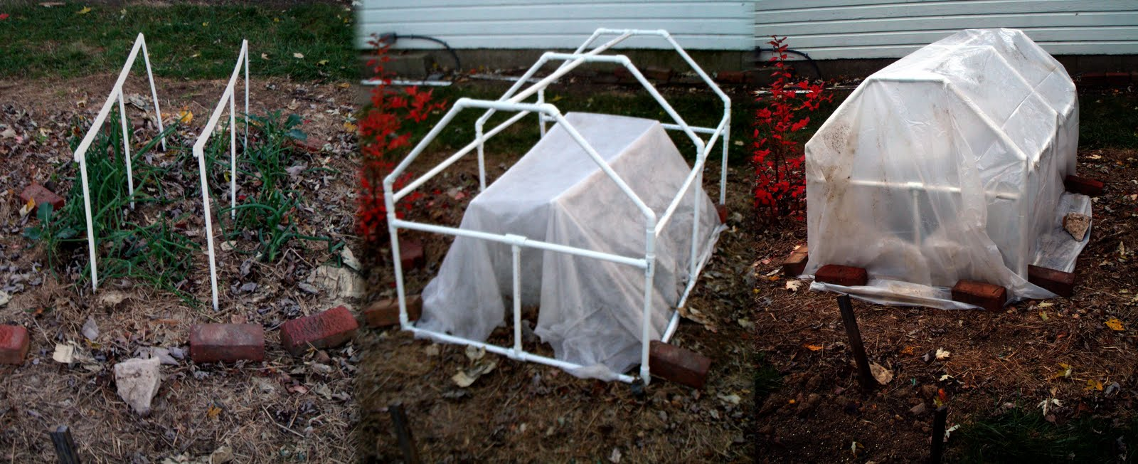Cold Weather Gardening Maryland Grows