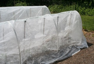 low tunnel covers