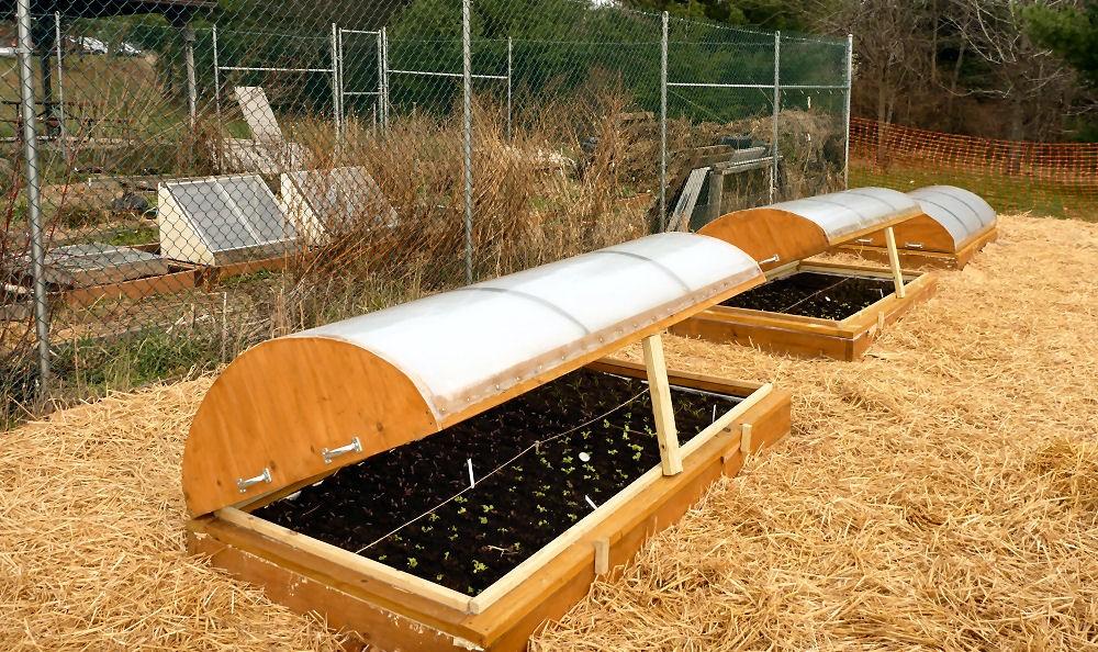 Solar Garden Beds Maryland Grows