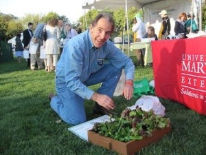 salad box demonstration