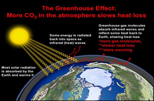 More CO2 in the atmosphere shows heat loss