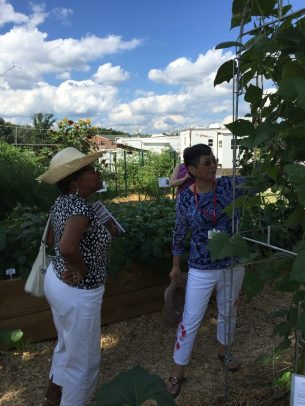 UME Master Gardener Suching Chou (r) shows off pole bean trellis