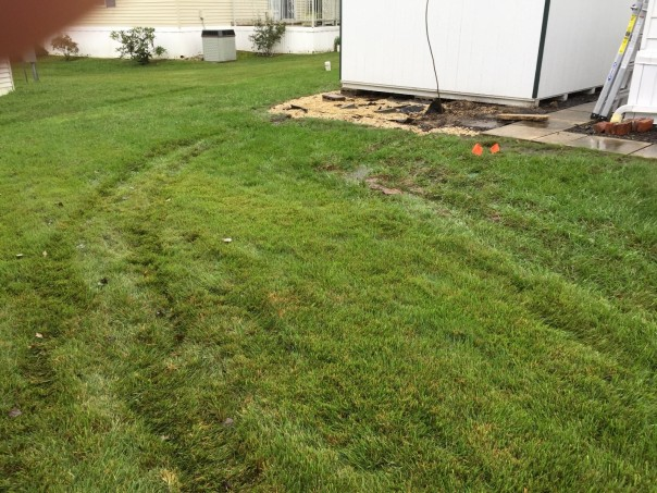 lawn with tire gouges