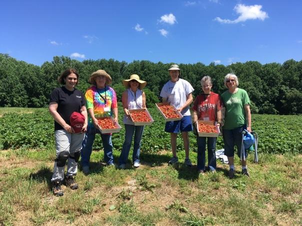 Master Gardener gleaners