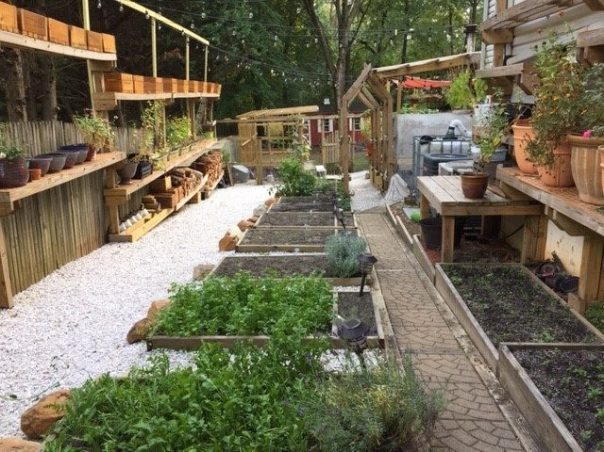 Elevated wood containers and raised beds.