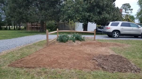 bare ground new garden