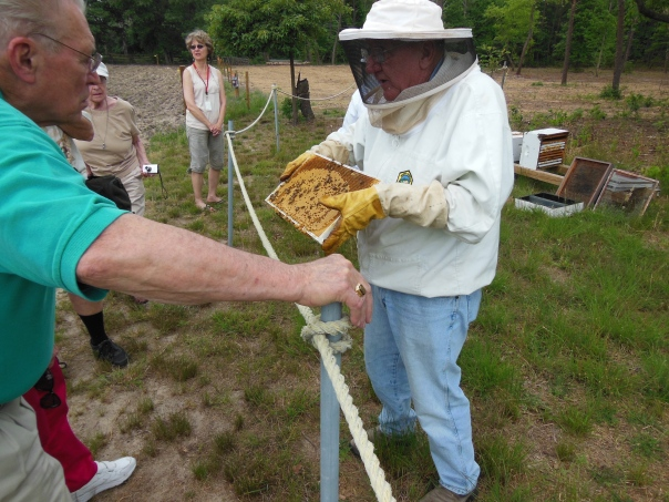 Master Gardener beekeeper at Hancock's Resolution Park