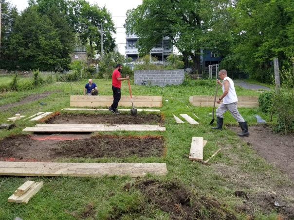 creating a new teaching garden