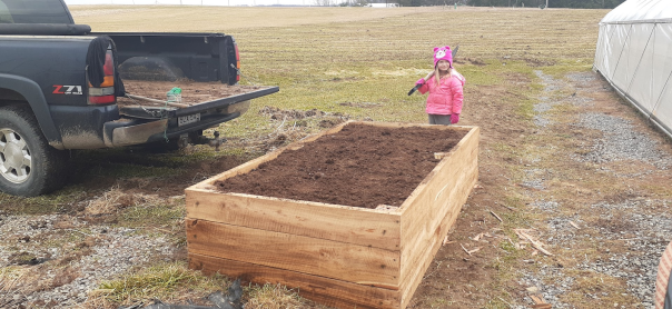 raised bed filled with soil
