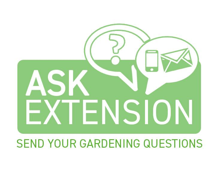 Ask Extension Button