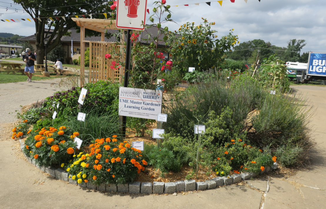 flower garden at the Maryland State Fair