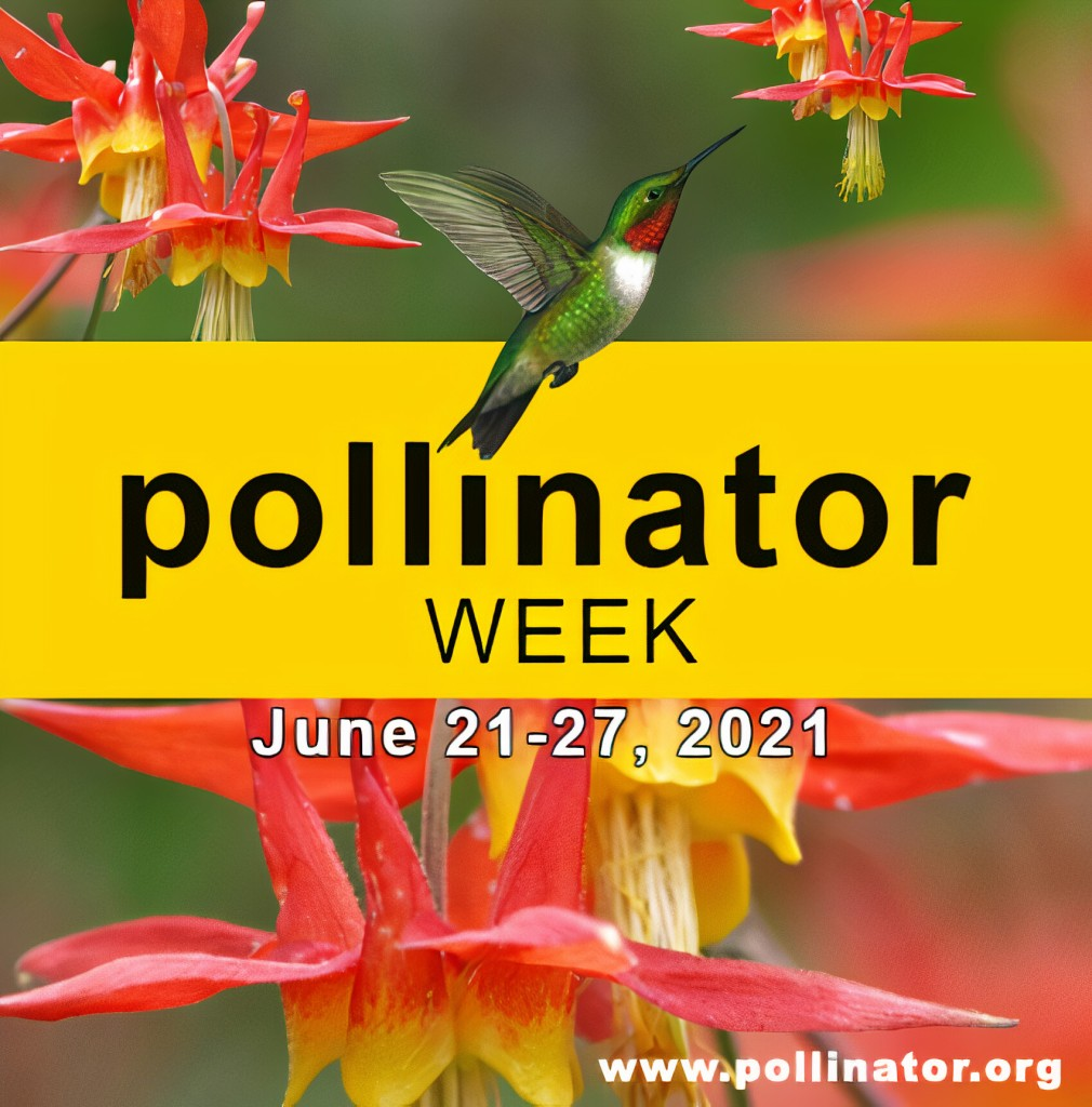 pollinator week - June 21-27